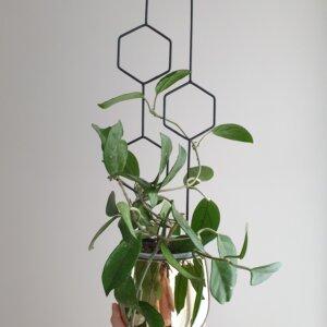 Podpórka do roślin Hexa Line
